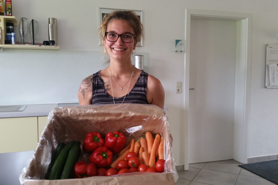 Organic Vegetables for Healthy Employees