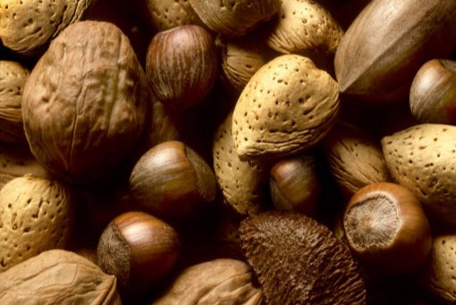 Gentle drying of nuts | HARTER drying solutions